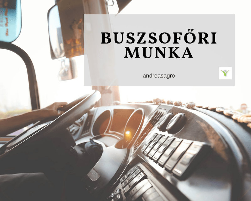 Buszsofor | Kulfoldi Munka | AndreasAgro