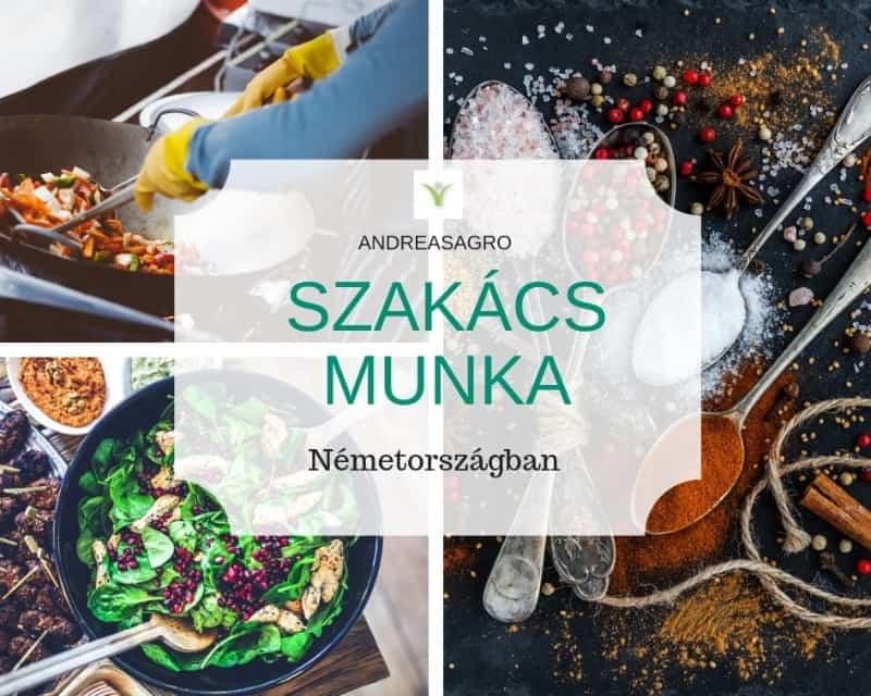 Szakacs Munka | Kulfoldi Munka | AndreasAgro