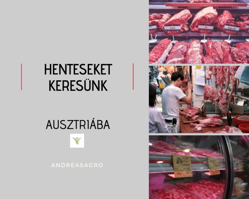 Hentes | Kulfoldi Munka | AndreasAgro